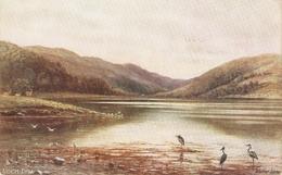 """Elwin A.Penley. Loch Dhu"" Tuck Oilette Dcottidh Lohs Series PC # 7167 - Tuck, Raphael"
