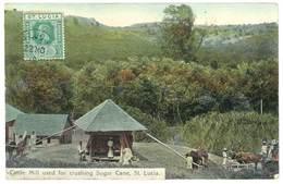 Cpa Antilles - Sainte Lucie / St Lucia - Cattle Mill Used For Crushing Sugar Cane ( Cane à Sucre ) - Sainte-Lucie