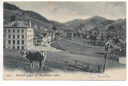 URNÄSCH Gegen Die Hundwyler Höhe, Kuh - AR Appenzell Rhodes-Extérieures