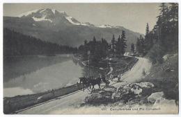CPA Suisse Campferersee Und Piz Corvatsch Près St Saint Moritz Silvaplana Pontresina Samedan Maloja Celerina Schlarigna - GR Grisons