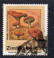 Zimbabwe 1992 Edible Mushrooms 65c Value, Used, SG 830 (BA) - Zimbabwe (1980-...)