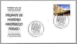 ORGANOS DE MONTORO - MAESTRAZGO (TERUEL). SPD/FDC Villarluengo, Teruel, Aragon, 2003 - Geología