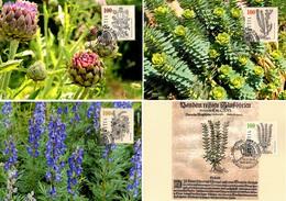 4 Mk 2018 Heilpflanzen / Medicinal Plants / Plantes Médicinales / Piante Medicinali - Cartes-Maximum (CM)