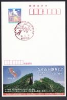 Japan Commemorative Postmark, Stamp Show Shizuoka Figure Skate Soccer Mt.Fuji (jca686) - Giappone