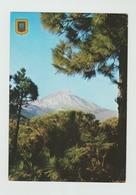 1991 ?  -  AK/CP/Postcard  Spanien/Kanaren/Tenerifa  -  Gelaufen   - Siehe Scan  (esp 001) - Tenerife