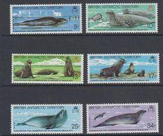 British Antarctic Territory (BAT) 1983 Antarctic Seal Conservation 6v ** Mnh (41649) - Ongebruikt