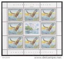 2007 Austria Österreich Mi. 2683 **MNH Sheet Seeadler - Blocs & Feuillets