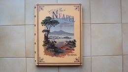 GERMANIA GERMANY KLEINPAUL R. NEAPEL UND SEINE UMGEBUNG 1884 NAPOLI E D'INTORNI HUBEL DENCK LEIPZIC - Libri, Riviste, Fumetti