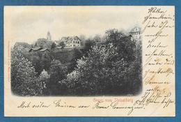 GRUSS VOM STEINERBERG 1900 - SZ Schwyz