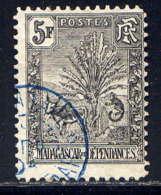 MADAGASCAR - 77* - ZEBU ET L'ARBRE DU VOYAGEUR - Madagascar (1889-1960)