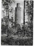 7595  SCHILDAU, SCHILDBERGTURM    1962 - Deutschland