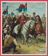 """"""" Le Liberateur"""" Pierre Ier De Serbie Par Pierre Zimmermann. Yougoslavie. Encyclopédie De 1970. - Oude Documenten"""