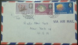 L) 1990 BARBADOS, MARINE LIFE, NATURE, 8C BLUE, 12C VIOLET, QUEEN, CIRCULATED COVER FROM BARBADOS TO USA, AIRMAIL - Barbados (1966-...)
