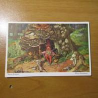CPA Gnomes Nains Lutins Gnome Martin Wiegand Champignon Mushroom Non Circulé Y - 15 - Fiabe, Racconti Popolari & Leggende