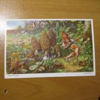 CPA Gnomes Nains Lutins Gnome Martin Wiegand Champignon Mushroom Non Circulé Y - 19 - Fiabe, Racconti Popolari & Leggende