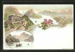 Lithographie Vierwaldstättersee, Hotel Axenfels über Dem See, Tellskapelle - UR Uri