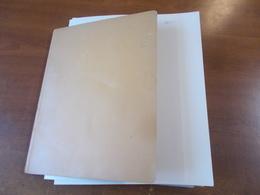 Lot N° 1  RUSSIE Collection Sur Page D'albums Neufs * Ou Obl.   .. No Paypal - Collections (en Albums)