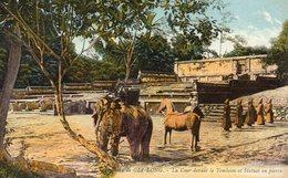 Asie Tombeau De Gia Long - Postcards