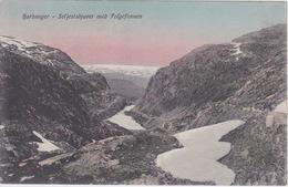 NORVEGE - NORDLAND NORWAY - HARDANGER SELJESTADJUVET MED FOFGEFONNEN - Norwegen