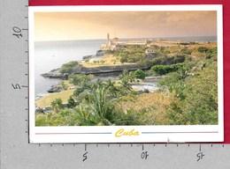 CARTOLINA VG CUBA - LA HABANA - El Morro - 12 X 17 - ANN. 2005 ZOOLOGICO NACIONAL - GIRAFFA - Cuba