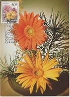 Tchécoslovaquie Carte Maximum Fleurs 1980 Gerbera 2400 - Cartas