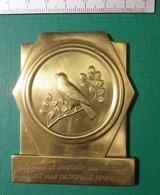 M I - Minister Van Cultuur - Vogeltentoonstellingsprijskamp - Geluwe 1964 - Brons 138 Gram - Belgium