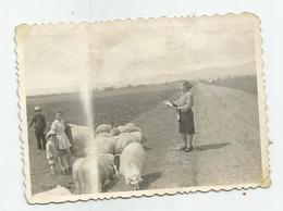 Woman,Girls In The Sheep  Op94-118 - Personas Anónimos