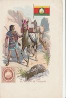 La POSTE Dans Le Monde - BOLIVIE - Timbres (représentations)