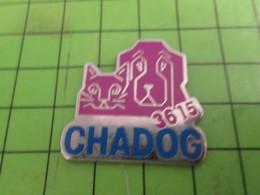 1415c Pin's Pins / Rare & De Belle Qualité : THEME ANIMAUX / 3615 CHADOG MINITEL CHIEN CHAT - Animals