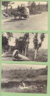 Vers PIETRAMALA , 10 Août 1948, Entre Passo Di Raticosa Et Passo Delle Futa. En étrange Attelage. 3 Photos. - Luoghi