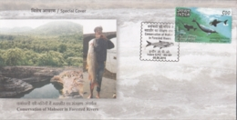 India 2016  Fishes  Conservation Of Mahsheer Fishes In Forested Rivers  Indore  Special Cover   #15706  D  Inde Indien - Fishes