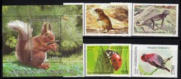 Uzbekistan 2018 Fauna Squirrel Ladybug Mouse Lizard Bird  4v + SS - Rettili & Anfibi