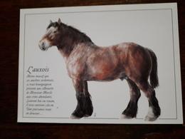 Cheval. L'Auxois. Illustration Philippe Meyrier - Horses