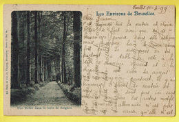 * Boitsfort - Watermaal Bosvoorde (Bruxelles) * (Ed Nels, Série 11, Nr 14) Drève Dans La Foret De Soignes, Bos, 1899 TOP - Watermael-Boitsfort - Watermaal-Bosvoorde