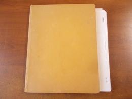 Lot N°8 ALLEMAGNE Occidentale + Orientale  , Collection Sur Page D'albums Neufs * Ou Obl.   .. No Paypal - Sammlungen (im Alben)