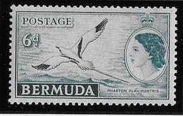 Bermudes N°114 - Oiseaux - Neuf ** Sans Charnière - TB - Bermudes