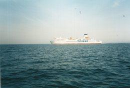 Orig.Photo  Fähre TS Line - Boats