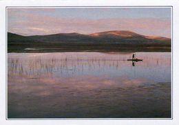 1 AK Peru / Bolivien * Der Titicaca See - Rückseite Bedruckt Siehe Scan * - Bolivie