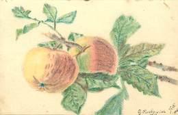 -ref-A958- Illustrateurs - Illustateur G. Carbonnier -1916 - Dessin Sur Papier Dessin - Pommes - Fruits - Guerre 1914-18 - Altre Illustrazioni