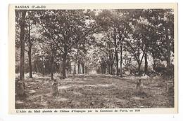 RANDAN  (cpa 63)  L'Allée Du Mail Plantée Ce Chênes D'Espagne Par La Comtesse De Paris En 1890   -  L 1 - Autres Communes