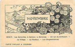 -ref-A953- Agriculture - Mois De L Année - Novembre - Semer - Semailles - Semeur - Semence .. - Carte Bon Etat - - Cultures