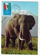 Carte Maximum ELEPHANT Africain - Elephants