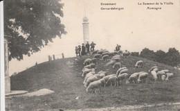 GERAARDSBERGEN - Geraardsbergen
