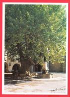 CPM-34- ST-GUILHEM-Le-DESERT _ Le PLATANE De La Place De L'Eglise ** 2 SCANS - Autres Communes