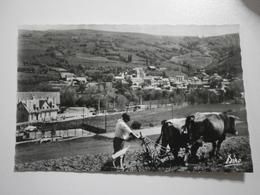 66 Saillagouse, Vue Générale (7726) - Other Municipalities