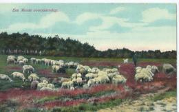 Vlaardingen - Een Mooie Voorjaarsdag - 1914 - Nederland