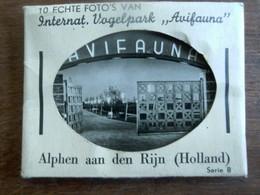 Oud Mapje  Met 10 Echte Foto's  ALPHEN Aan De Rijn  ( HOLLAND )1956 - Foto's