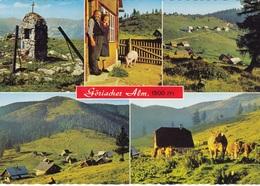 GÖRIACHER ALM In SEEWIESEN - Österreich
