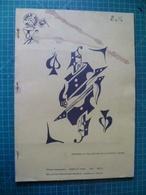 Histoire Et Collection De La Carte à Jouer. Rare Publication Illustrée De 1982 - Cartes à Jouer Classiques