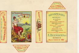 1897 Rare Papier étiquette De Paquet De Cigarettes Cigarette LE TRIOMPHE DE L'EXPOSITION - Autres